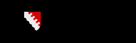 Joensuun kaupungin logo